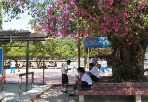 Schulhof der Schule, im Hintergrund der Sportplatz.