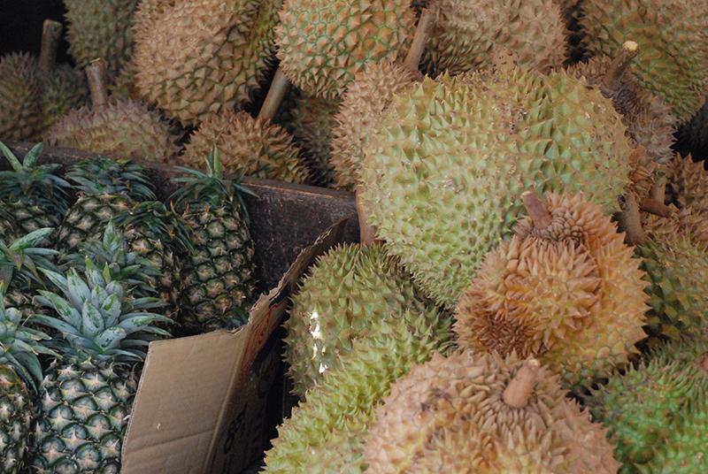 850_Ananas_Durian