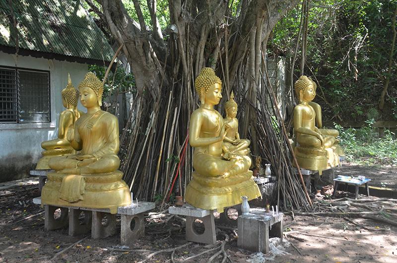 8WtSiray696_BuddhasUnten