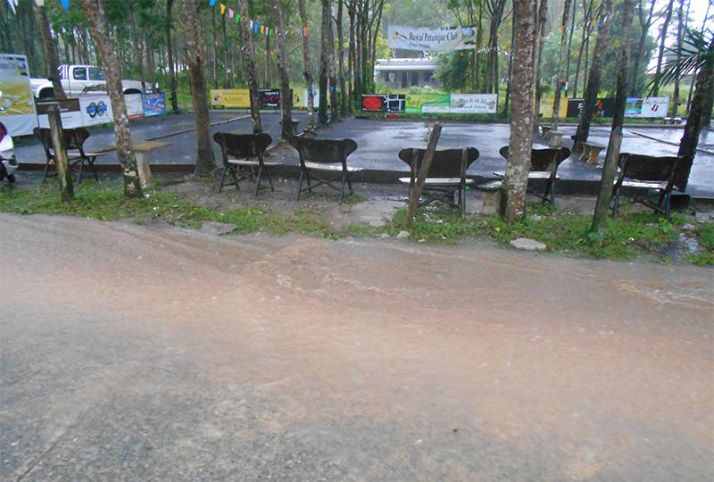 7_CBP_Regen